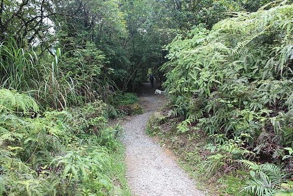 0525獅頭山翠山步道碧溪步道及大崙尾山 (12).JPG