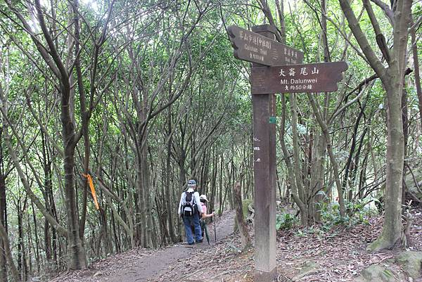 0525獅頭山翠山步道碧溪步道及大崙尾山 (16).JPG