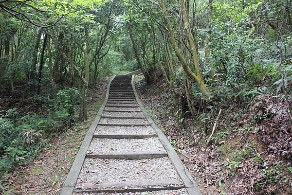 0525獅頭山翠山步道碧溪步道及大崙尾山 (19).JPG