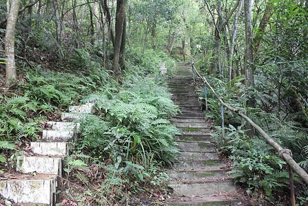 0525獅頭山翠山步道碧溪步道及大崙尾山 (27).JPG