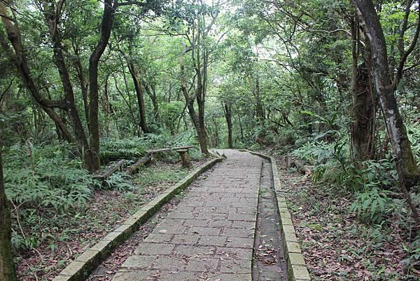 0525獅頭山翠山步道碧溪步道及大崙尾山 (39).JPG