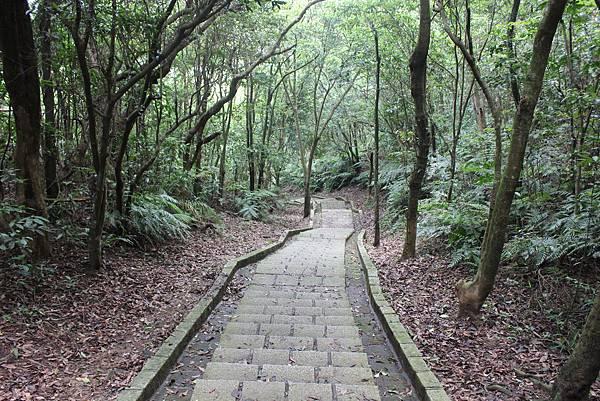 0525獅頭山翠山步道碧溪步道及大崙尾山 (40).JPG