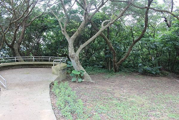 0525獅頭山翠山步道碧溪步道及大崙尾山 (43).JPG