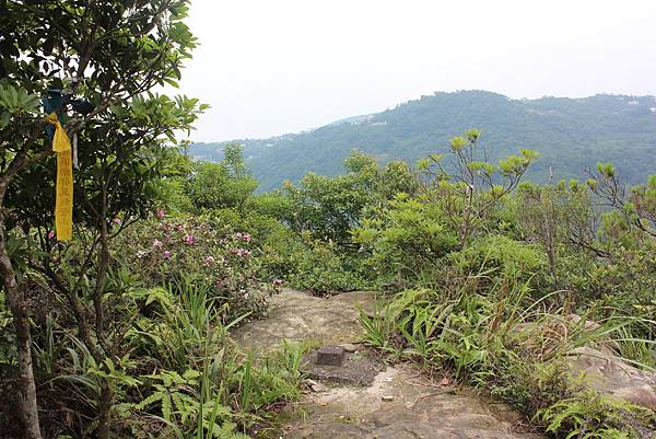 0525獅頭山翠山步道碧溪步道及大崙尾山 (49).JPG