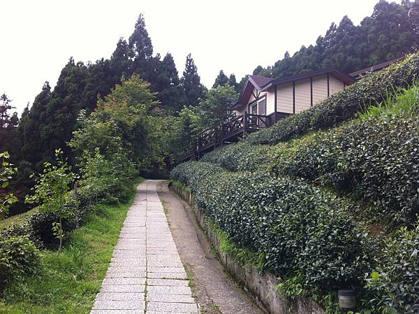 0614山上人家鵝公髻山 (1).JPG