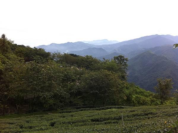 0614山上人家鵝公髻山 (2).JPG