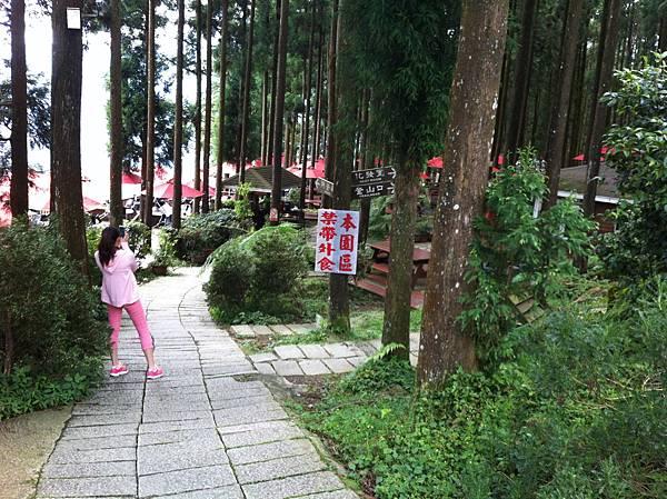 0614山上人家鵝公髻山 (3).JPG