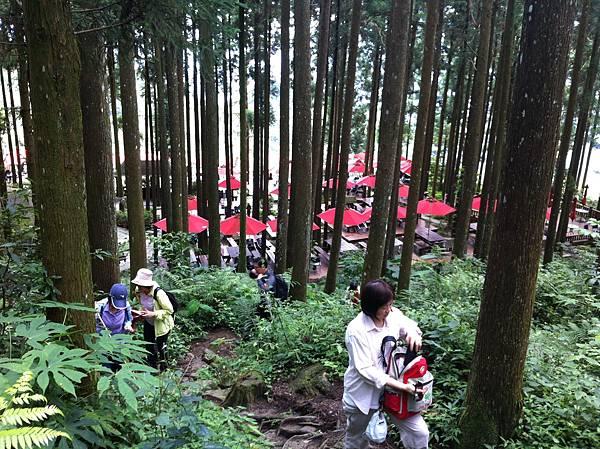 0614山上人家鵝公髻山 (8).JPG