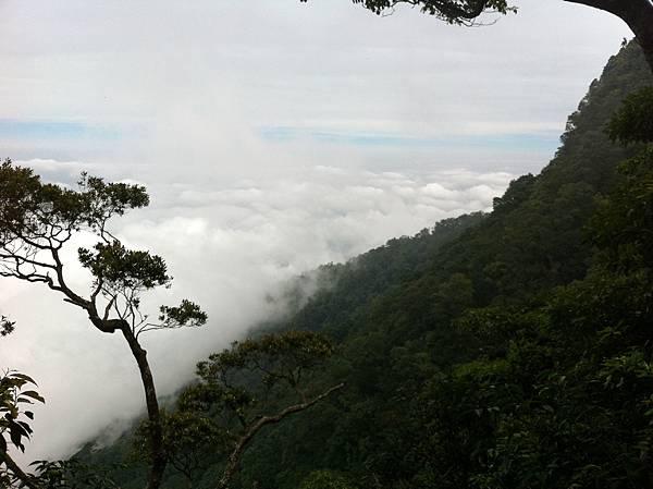 0614山上人家鵝公髻山 (30).JPG