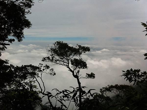 0614山上人家鵝公髻山 (31).JPG