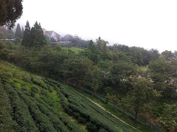 0614山上人家鵝公髻山 (35).JPG