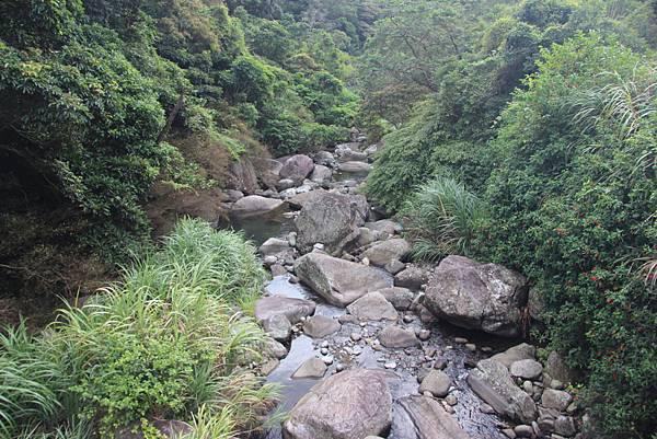 1005坪頂古圳、鵝尾山 (9).JPG