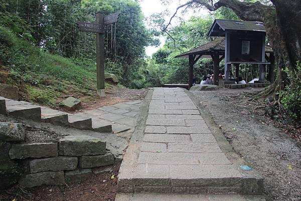 1005坪頂古圳、鵝尾山 (48).JPG
