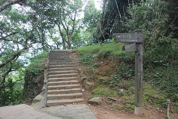 1005坪頂古圳、鵝尾山 (49).JPG