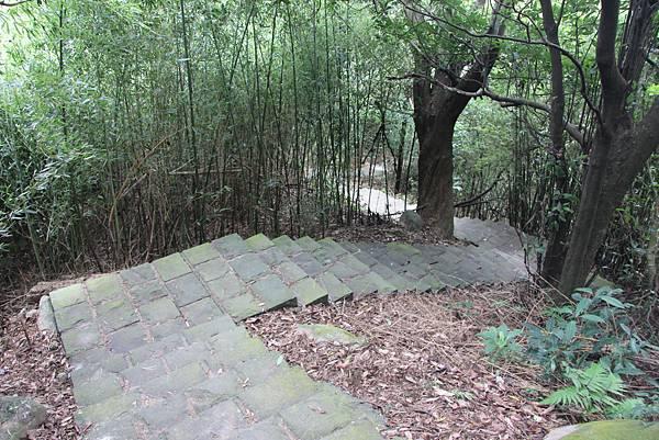 1005坪頂古圳、鵝尾山 (58).JPG