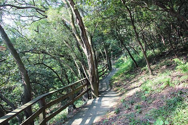 1018鶯歌石步道 (6).JPG