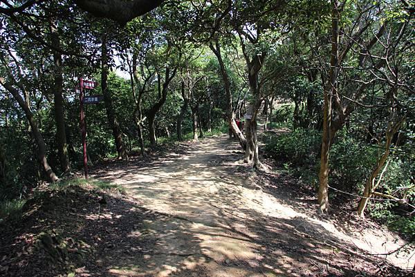 1018鶯歌石步道 (38).JPG