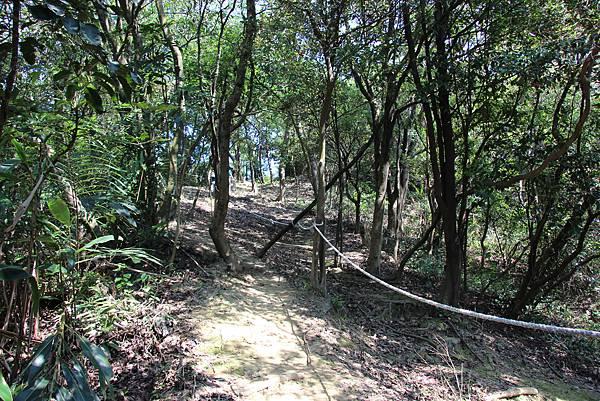 1018鶯歌石步道 (42).JPG