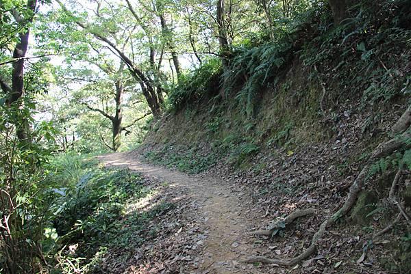 1018鶯歌石步道 (44).JPG