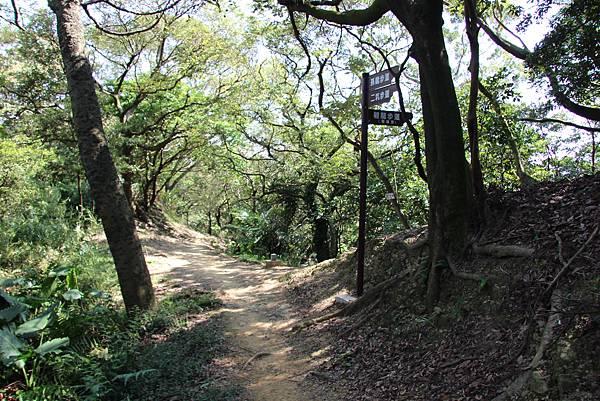 1018鶯歌石步道 (45).JPG