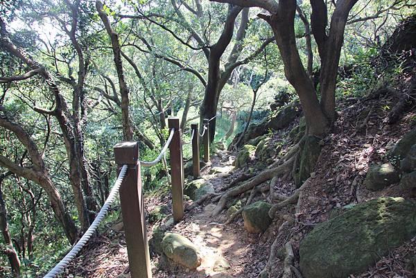 1018鶯歌石步道 (52).JPG