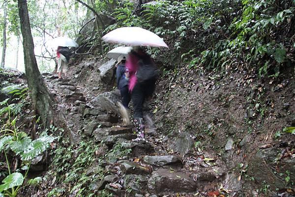 1102青山瀑布 (13).JPG