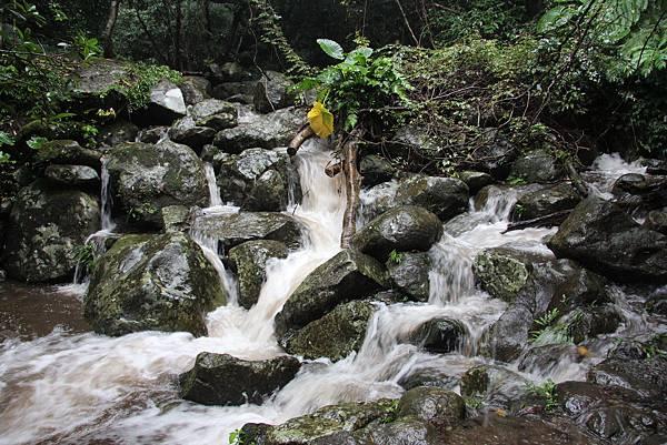 1102青山瀑布 (15).JPG