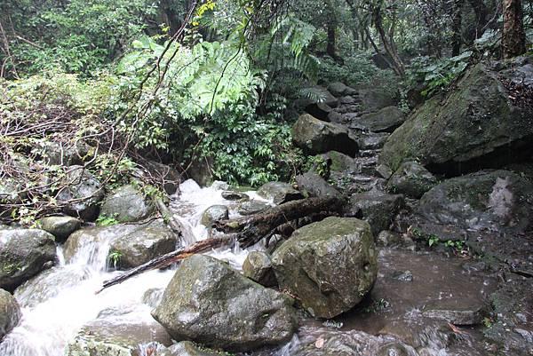 1102青山瀑布 (16).JPG