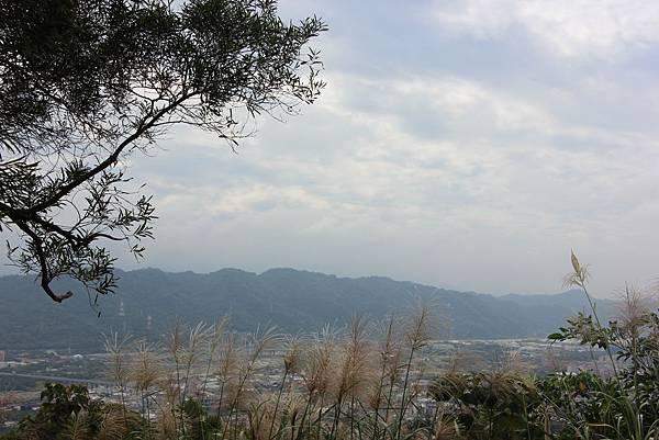 1116碧龍宮至忠義宮 (49).JPG
