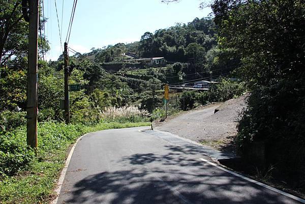 1129石碇鱷魚島 (16).JPG
