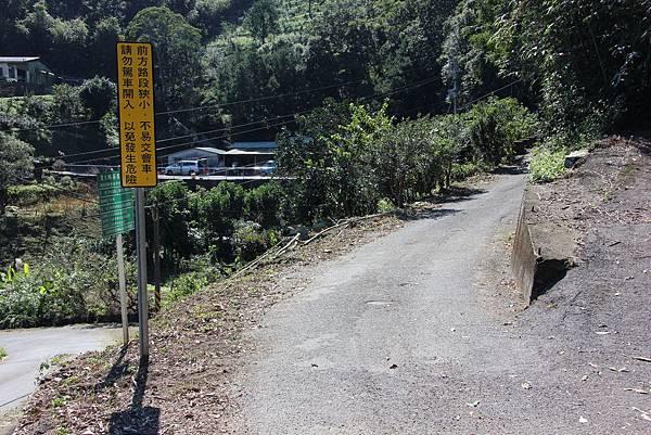 1129石碇鱷魚島 (17).JPG