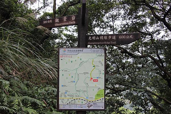 1220鶯歌千年大榕樹 (7).JPG