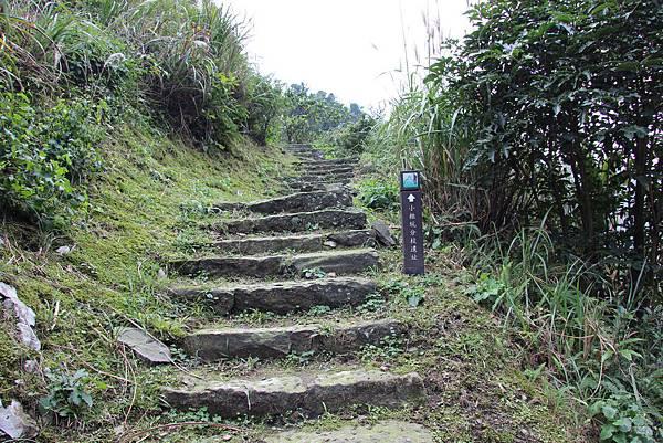 0101小粗坑古道小粗坑山 (11).JPG