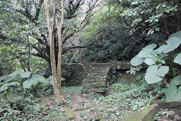0101小粗坑古道小粗坑山 (13).JPG