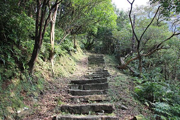 0101小粗坑古道小粗坑山 (23).JPG
