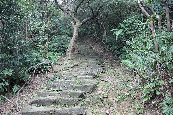 0101小粗坑古道小粗坑山 (24).JPG