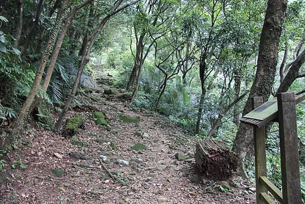 0101小粗坑古道小粗坑山 (25).JPG