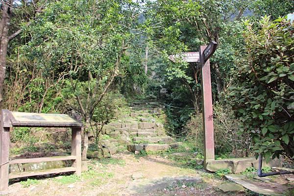 0101小粗坑古道小粗坑山 (26).JPG