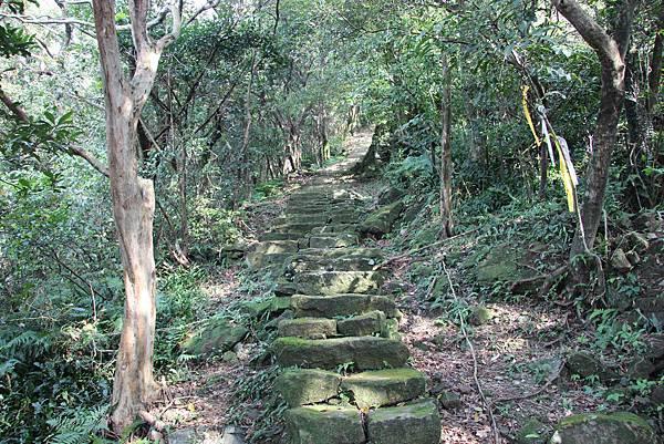 0101小粗坑古道小粗坑山 (38).JPG