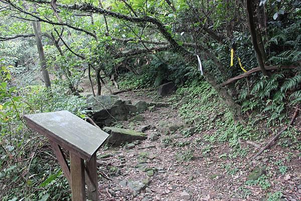 0101小粗坑古道小粗坑山 (41).JPG