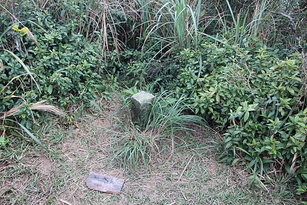 0101小粗坑古道小粗坑山 (49).JPG