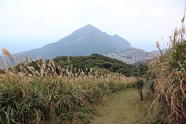 0101小粗坑古道小粗坑山 (57).JPG