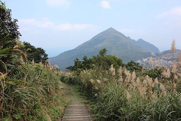 0101小粗坑古道小粗坑山 (59).JPG