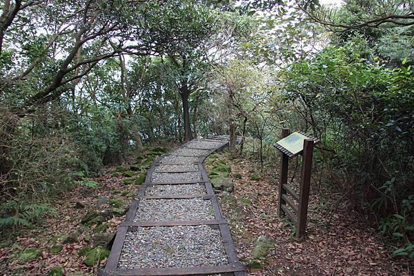 0101小粗坑古道小粗坑山 (64).JPG