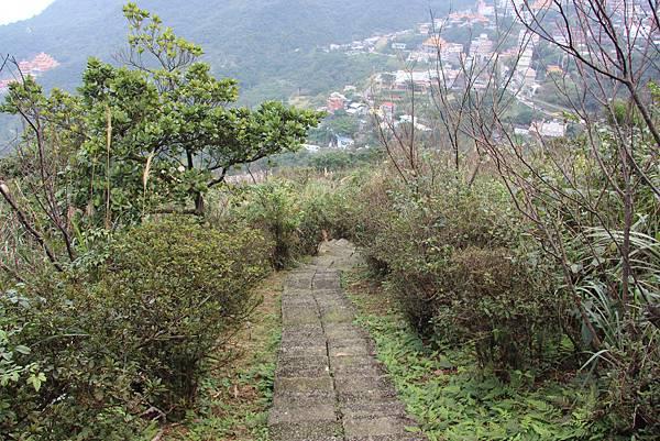0101小粗坑古道小粗坑山 (65).JPG