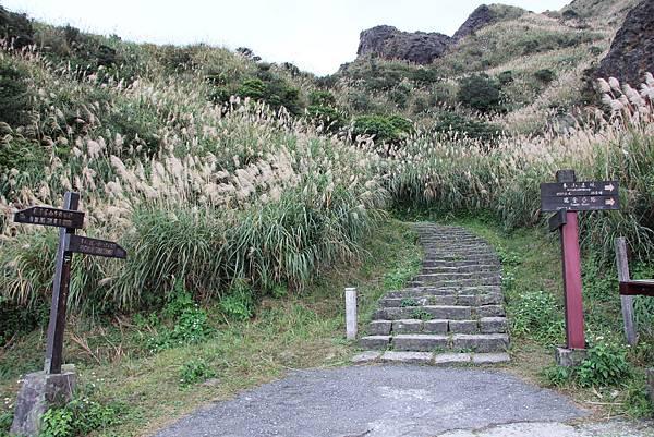 0110金瓜石無耳茶壺山 (26).JPG