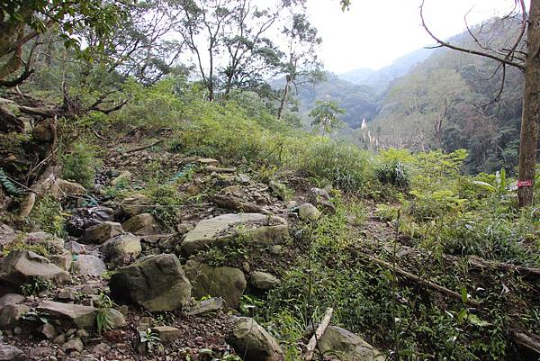 0207三峽雲森瀑布 (18).JPG