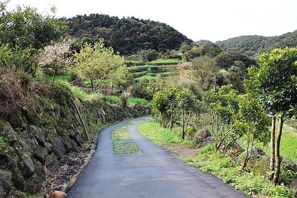 0308竹仔湖上中正山 (4).JPG