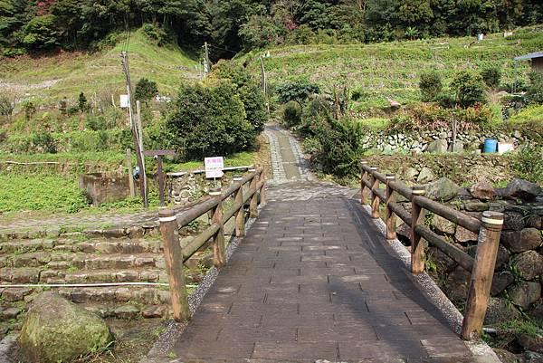 0308竹仔湖上中正山 (6).JPG