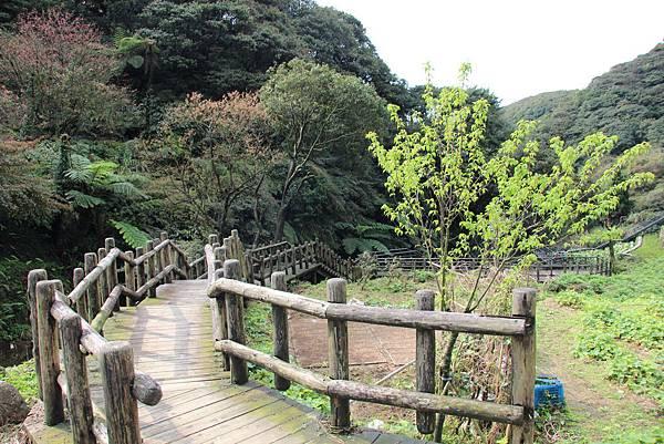 0308竹仔湖上中正山 (9).JPG